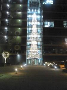 Коледна и светлинна украса